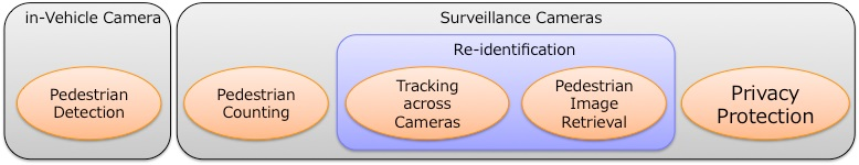 Pedestrian Detection / Tracking / Identification