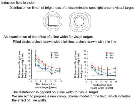 Figure : Induction field in vision (effect of line width)